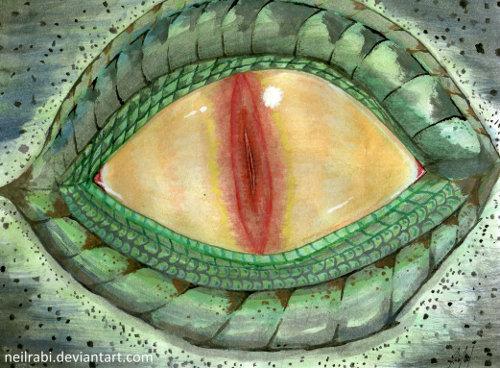 reptilian_eye_watercolor_by_neilrabi-500
