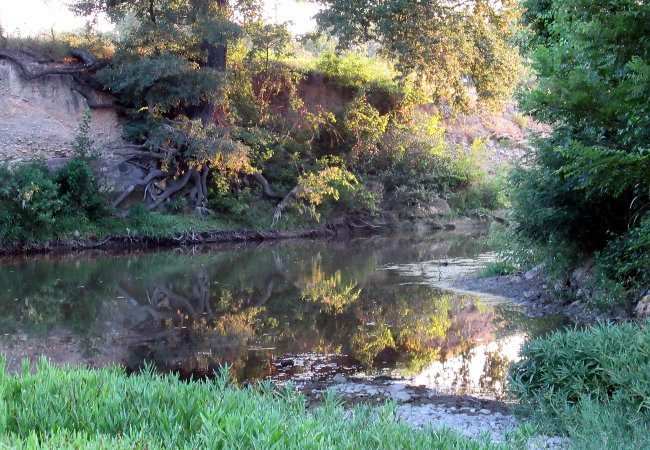 creek_cropped_autoleveled650w