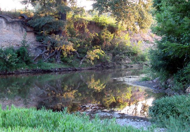 creek_cropped_autoleveled650w