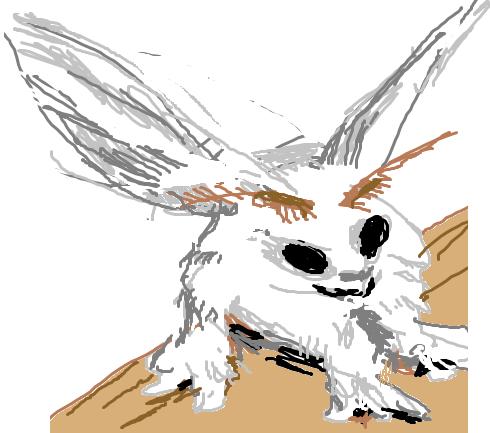 poodle_moth
