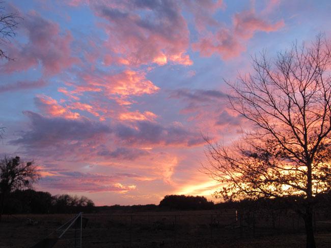 sunset (12-28-19)