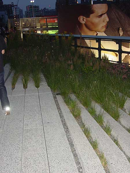 high line (flash)