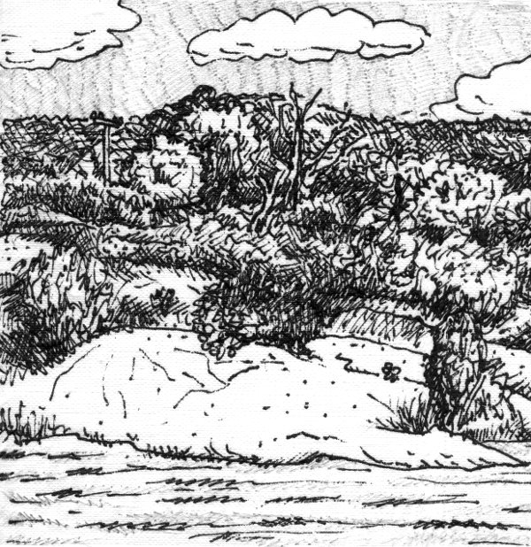 landscape2