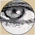 eyepog-copy