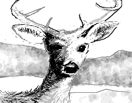 wherethedeer_screenshot_deer