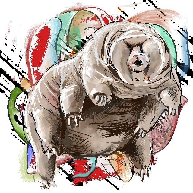 sketch_n1_tardigrade