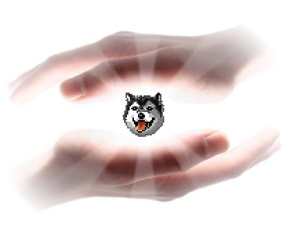 huskyhands