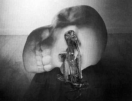oursler skull