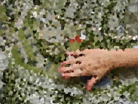 lialina - google map - crystallized