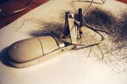 DeLappe Artist's Mouse