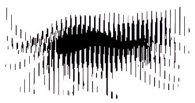 cat animation frame